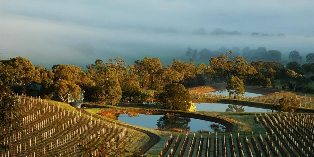 Coldstream Hills Vineyards and Ponds