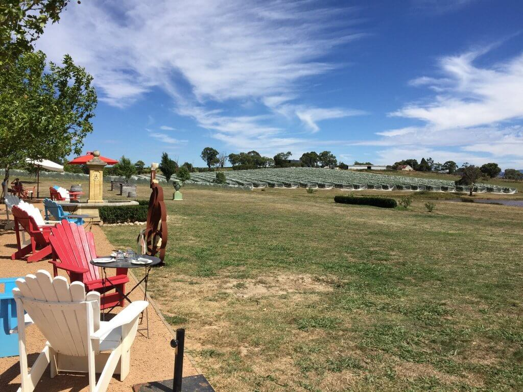 Exotic Winery Tour Melbourne
