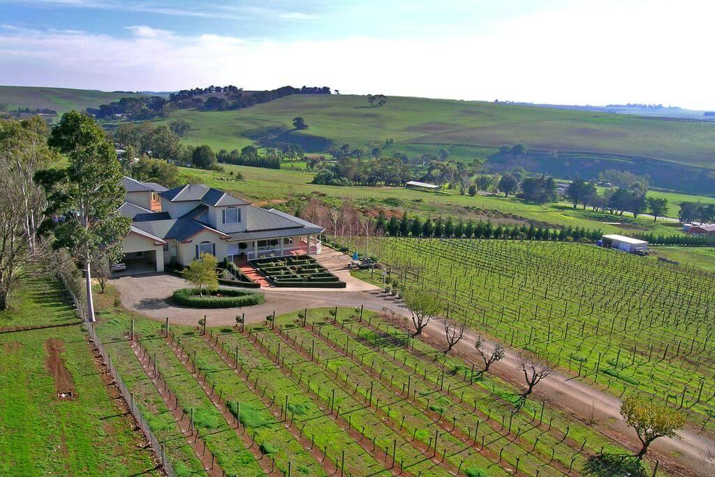 Geelong Wine Reason
