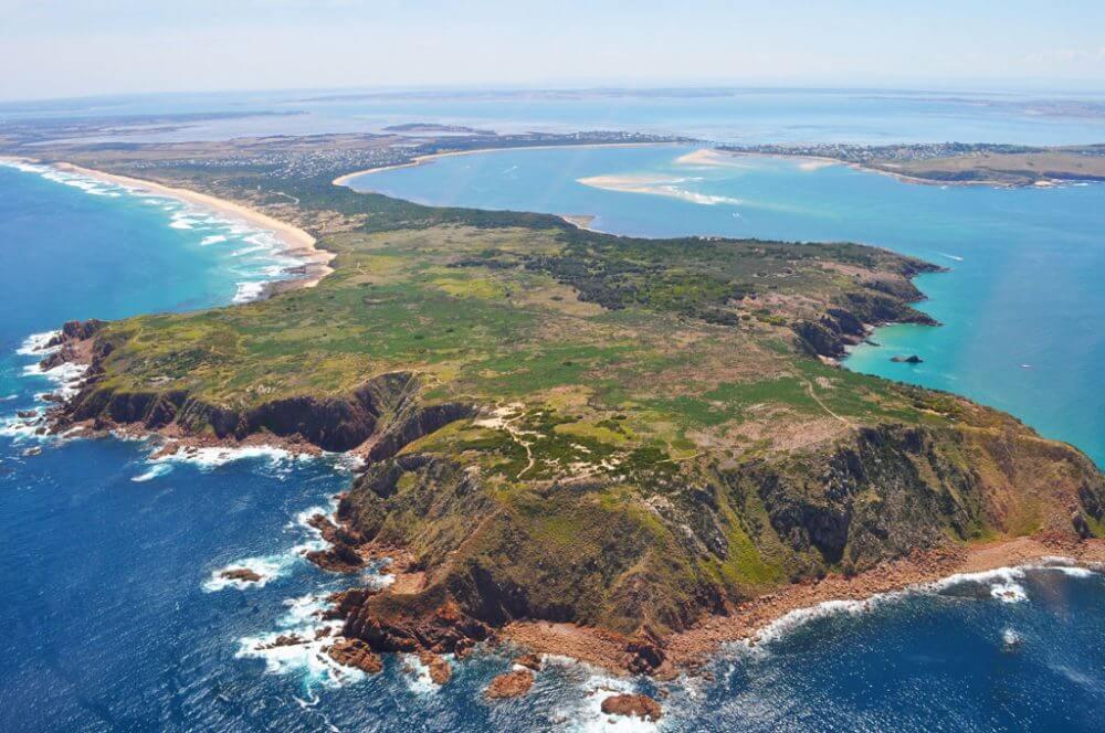 Phillip-Island_melbourne