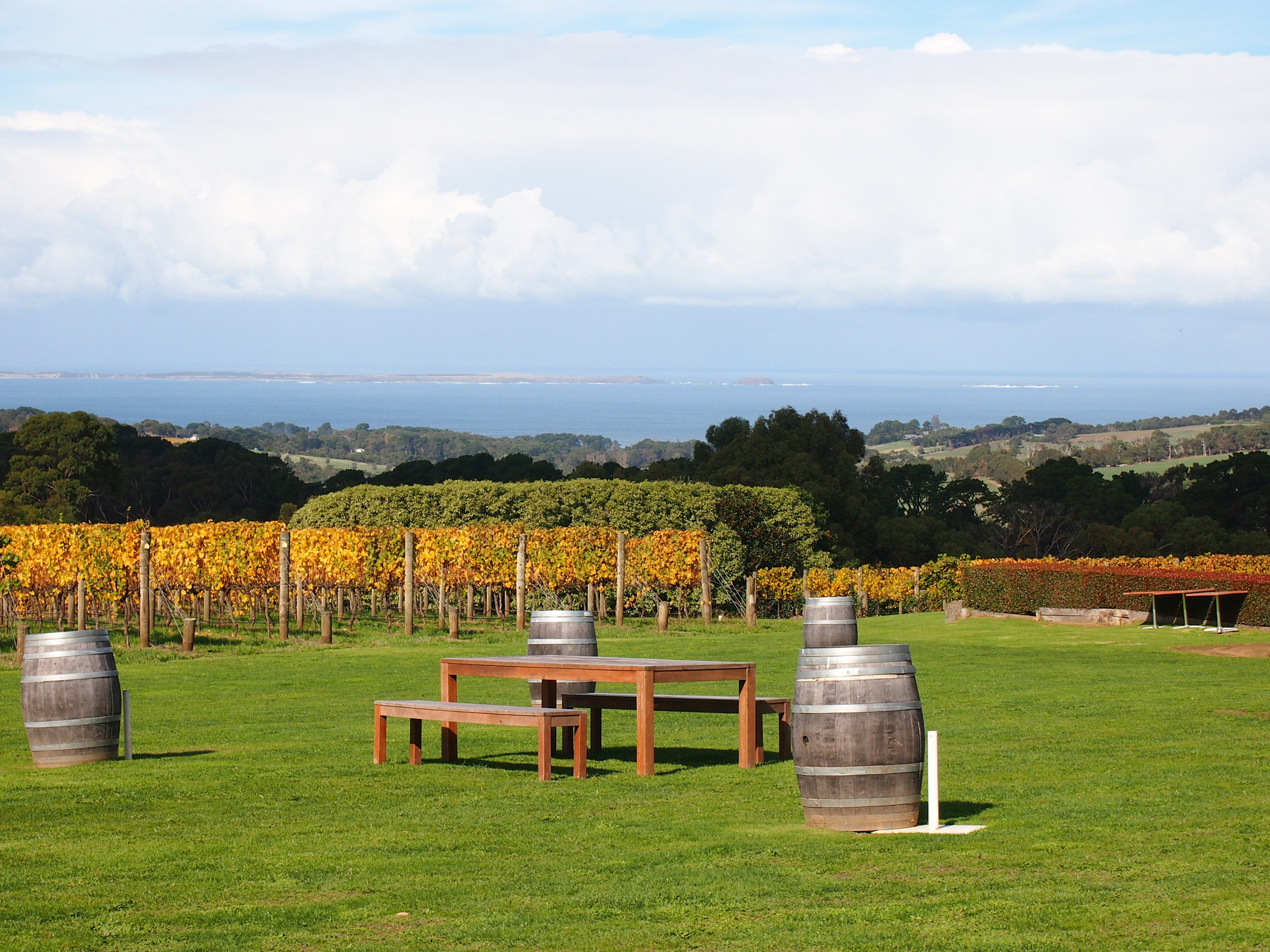 red hill winery tour